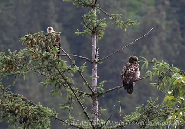 Juneau 朱諾 Eagle Point 鷹
