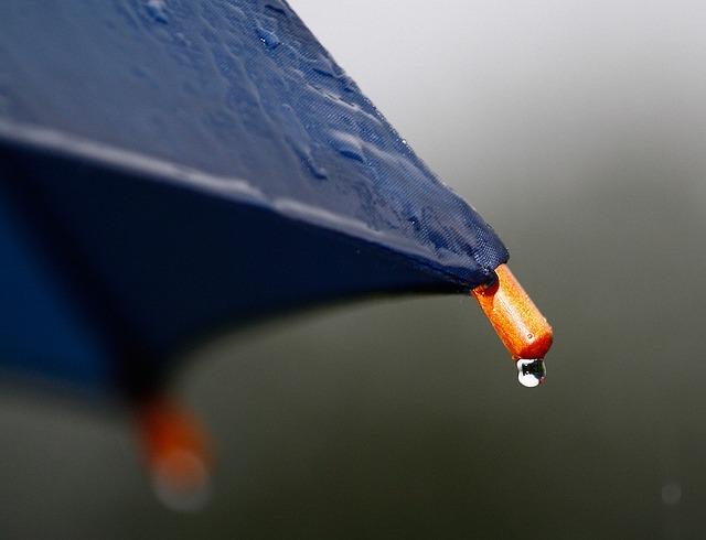 ảnh giọt nước trên ô dù đang mưa