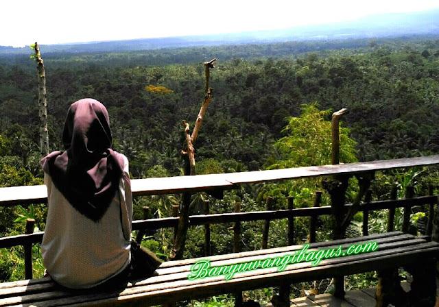 Green Gumuk Candi, Songgon-Banyuwangi.