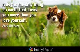 inspirational quotes: a dog is the only thing on earth loves you more than you love yourself.