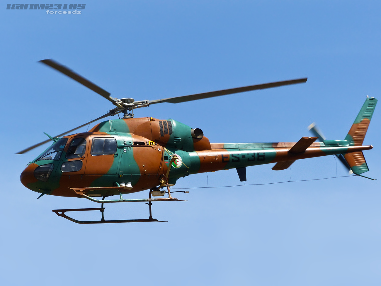 صور مروحيات القوات الجوية الجزائرية Ecureuil/Fennec ] AS-355N2 / AS-555N ] - صفحة 3 366