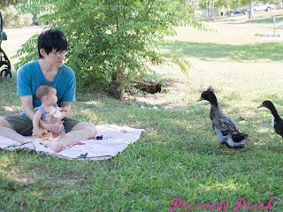 寶寶野餐去