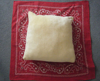 Primary Inspiration No Sew Classroom Pillow Diy Project