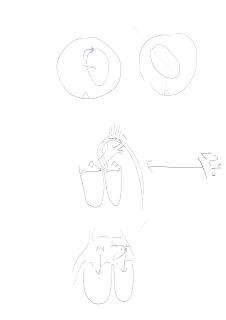 Professor Marshall's heart sketches