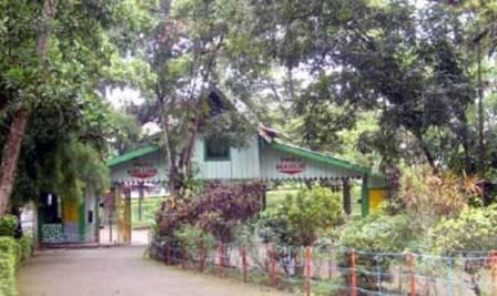 Hutan Wisata Punti Kayu kota palembang