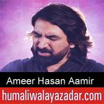 https://www.humaliwalyazadar.com/2019/05/ameer-hasan-aamir-noha-ayyam-e-ali.html