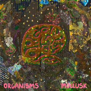 organisms, mollusk, album, review, album art, album cover, organisms mollusk, organism, psych, psychedlic, prog rock, progressive, tanton, joseph quinn, grazing saints, lizzy burt, woodland creatures