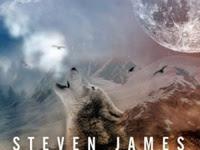 Resenha Fúria - Trilogia Blur # 2 - Steven James