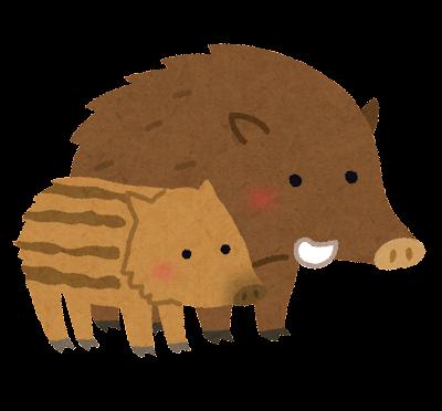 イノシシの親子のイラスト