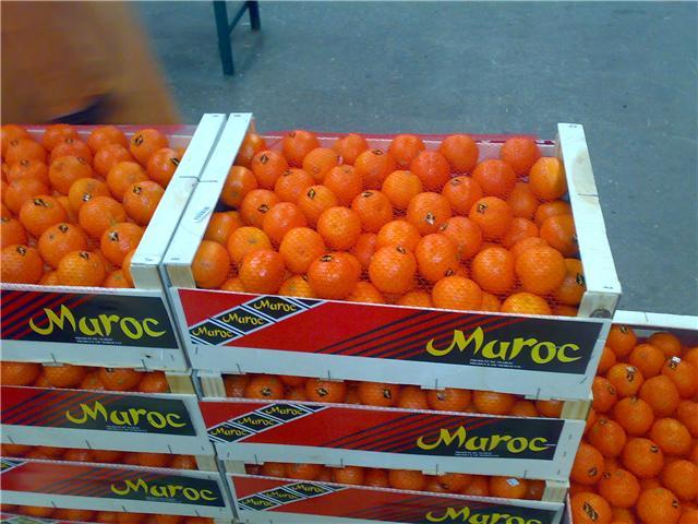 La Chine importer en masse les agrumes du Maroc.
