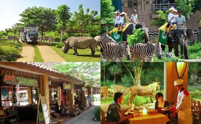 Bali Safari Marine Park Hal Menarik Informasi