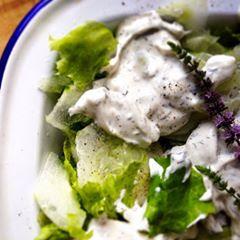 green salad, tzatziki, mint, salad dressing,