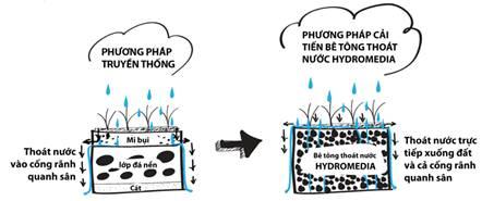 phuong-phap-lam-via-he-tan-tien