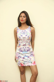 Nishi Ganda stunning cute in Flower Print short dress at Tick Tack Movie Press Meet March 2017 061.JPG