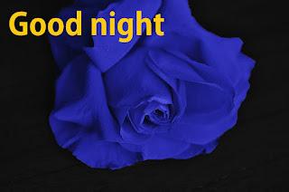 good night blue rose images