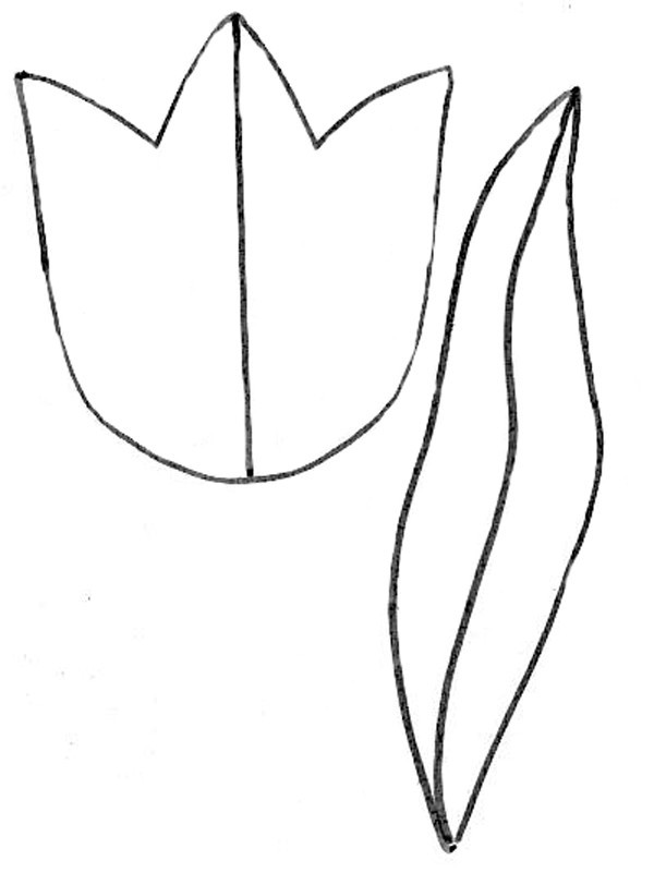 Открытки, шаблоны тюльпанов из бумаги для распечатки на принтере