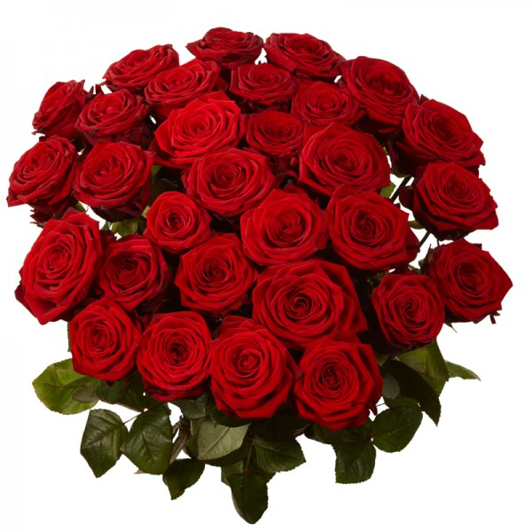 Red_Roses_Bunch_with_leafs