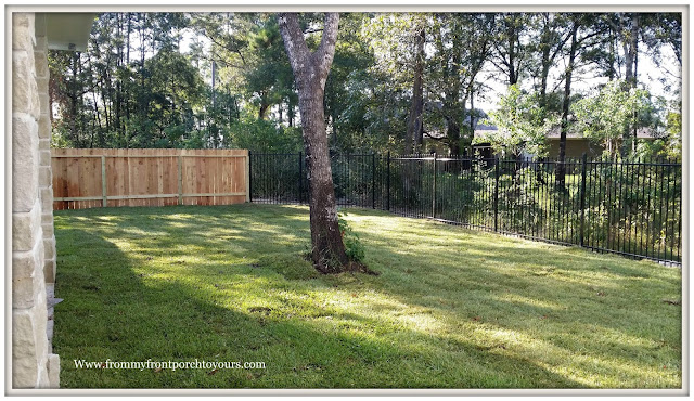 Oak Tree-Landscpaing-Backyard-Sod-From My Front Porch To Yours