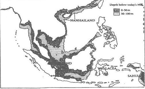 Tình hình phân hóa xã hội thời Hùng Vương
