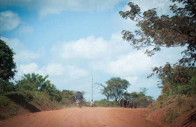 Din Murchison Falls NP spre sud, Uganda