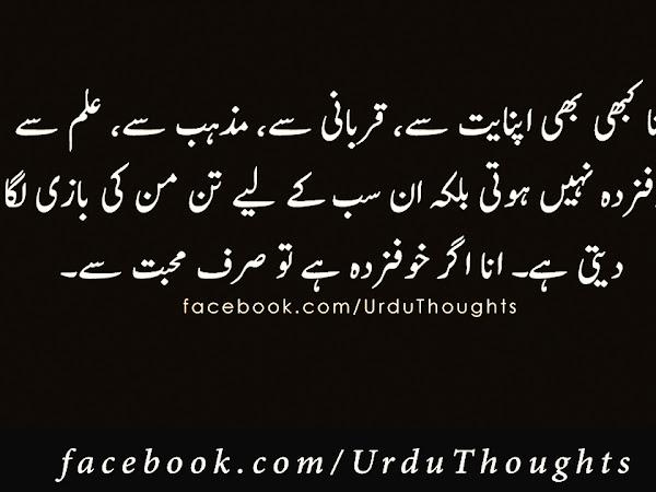Best 15 Urdu Quotes Images - Golden Words Urdu