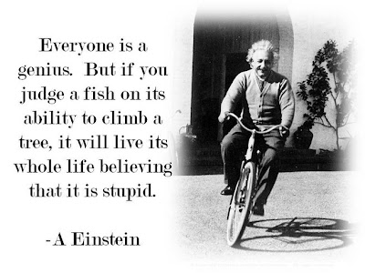 genius-quote-albert-einstein