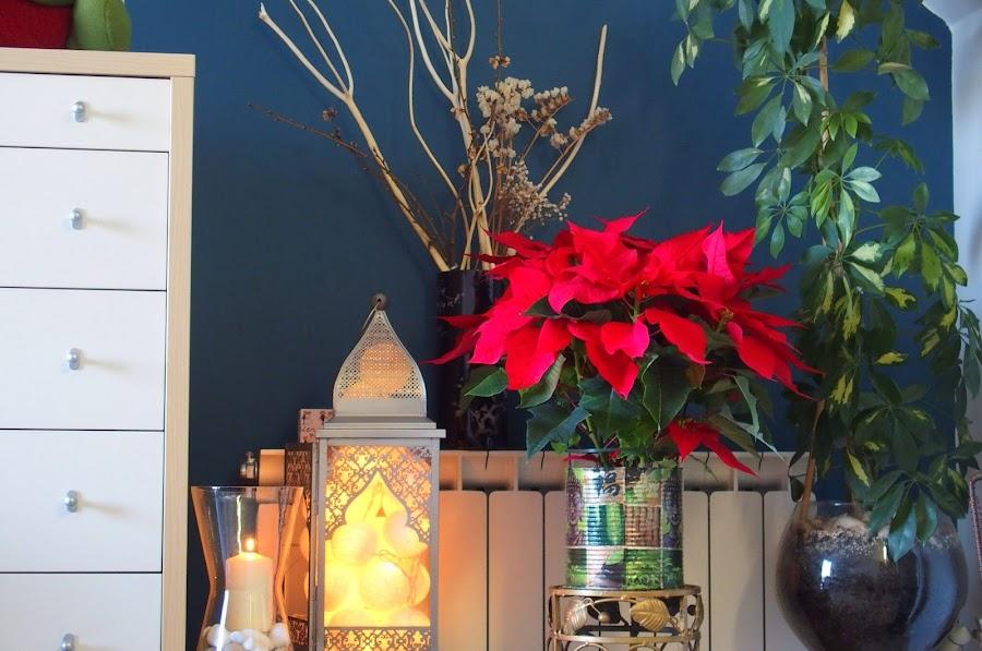 En Navidad es muy fácil tener representado el elemento fuego con velas y luce.