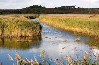 Westleton Suffolk