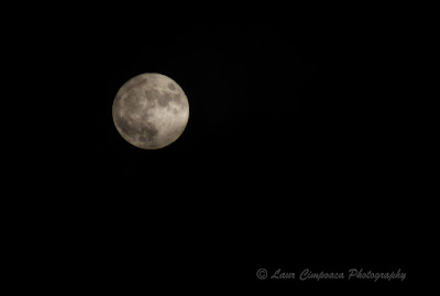 Luna-Moon-Σελήνη-Hold-Lua