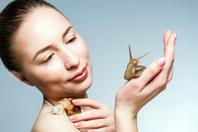 Ślimacze piękno – kosmetyczne właściwości naturalnego śluzu
