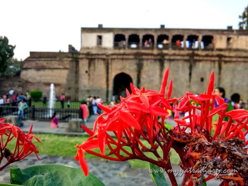 Lovely flowers in teh garden of Shaniwar wada fort, Pune