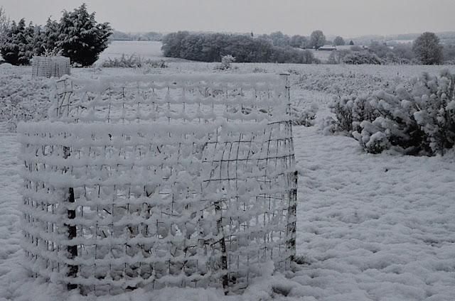 Mon jardin et au lieu le village de Fontenouilles Yonne Puisaye