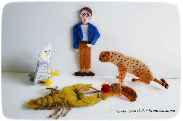 пальчиковый театр, ученый, гепард, сова, рак, дрозофила