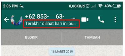 Cara Menyembunyikan Terakhir Dilihat di WhatsApp