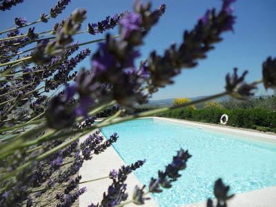 Villa in Tuscany with private garden and pool, Country home, country side accommodation, Privacy and space in the Tuscan country side