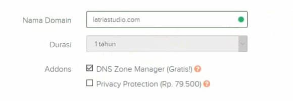 memilih DNS zone manager