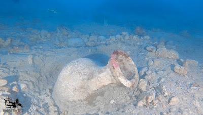 Ρωμαϊκό ναυάγιο με γαλατικούς αμφορείς βρέθηκε στα ανοικτά των ακτών του Portofino