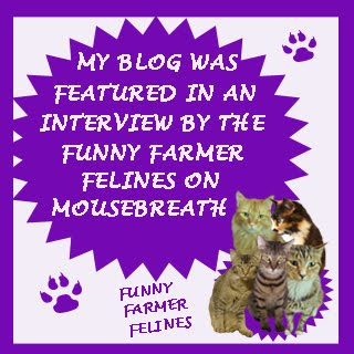 We were interviewed by the Funny Farmer Felines!