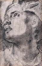 spencer alley drawings jacopo
