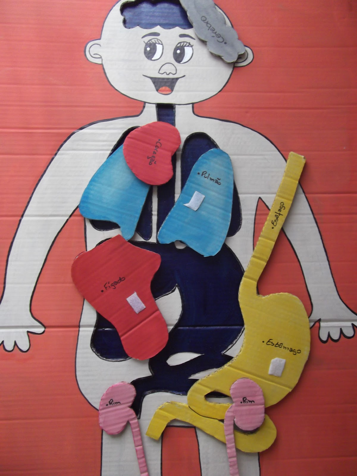 Fa a voc mesmo quebra cabe a do corpo humano for Materiales para pintar un mural
