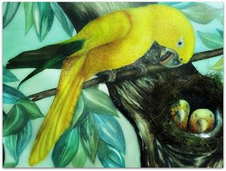 Ararajuba - Evelise T. Lerner (Aquarela)