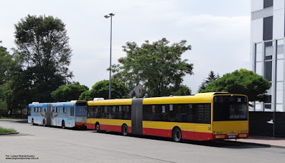 Solaris Urbino 18, MPK Kielce