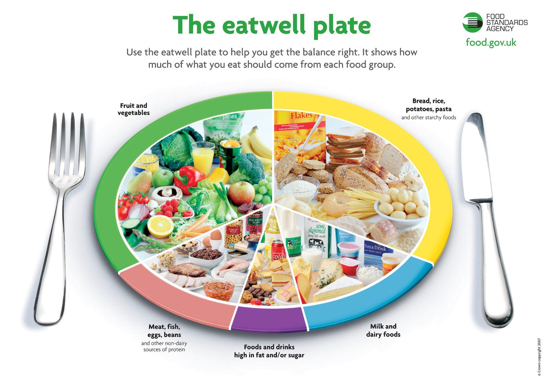 Tips Diet Sehat dan Cepat   Melilea Makanan Hidup Sehat