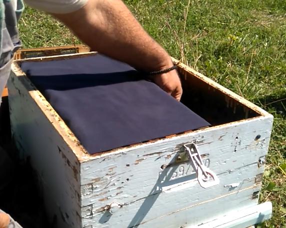 Παραφυάδα: Προετοιμασία για το χειμώνα. Χειρισμοί που σώζουν μελίσσια...