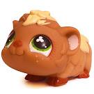 Littlest Pet Shop Multi Pack Guinea Pig (#753) Pet