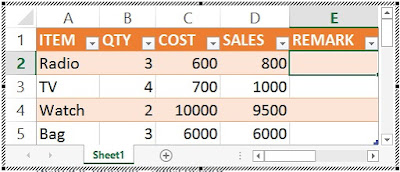 Nested IF function – Sales Record