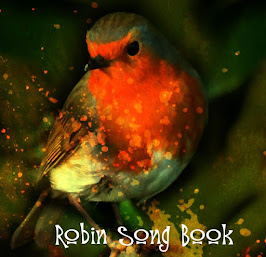 Folding Book Art - Bird Song