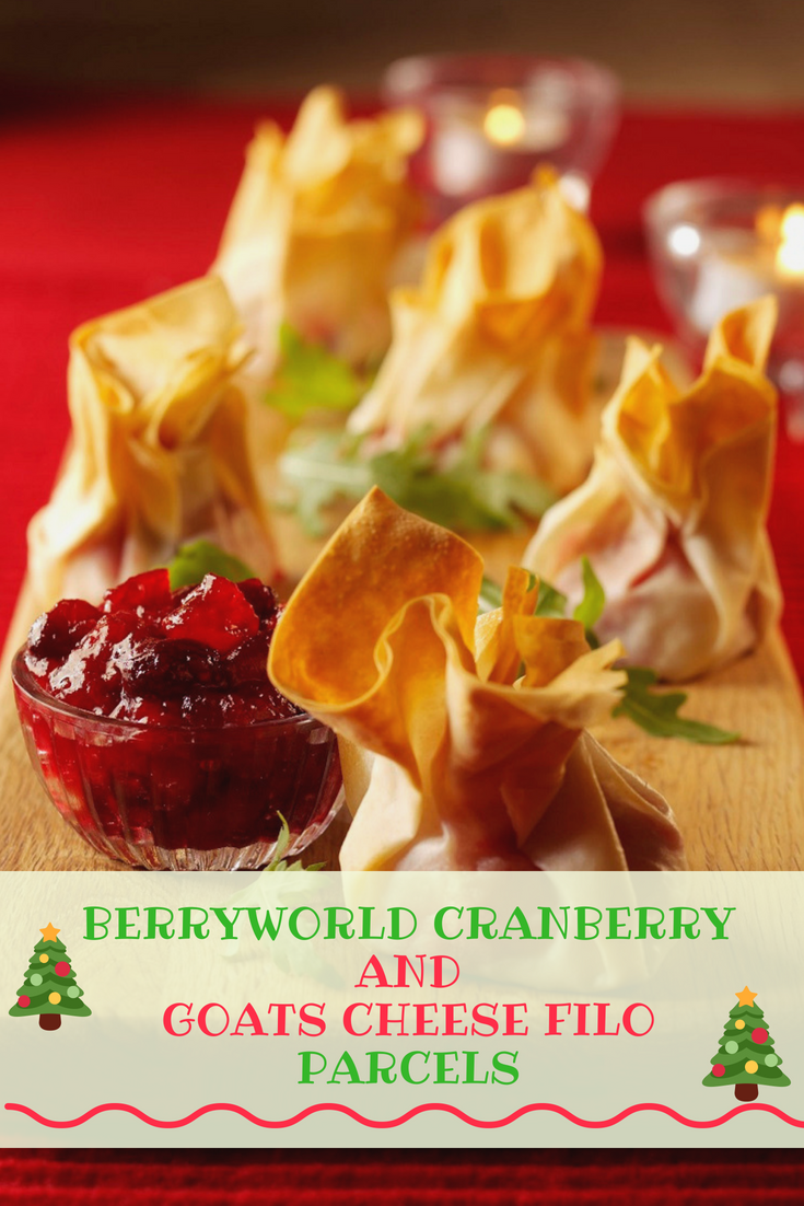 BerryWorld Cranberry And Goats Cheese Filo Parcels