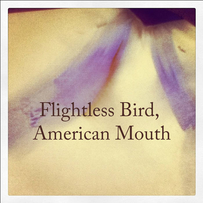 Iron and wine flightless bird american mouth album-7394