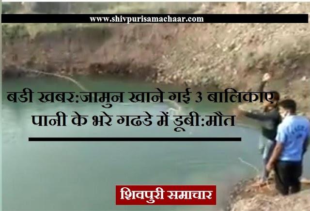 बडी खबर: जामुन खाने गई 3 बालिकाए पानी के भरे गढडे में डूबी: मौत / Shivpuri News